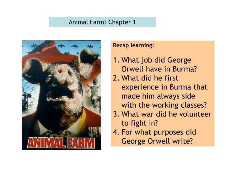 an analysis of the first chapter of the novel animal farm by george orwell And people and the imaginary ones created by orwell the novel can chapter iii the farm animals signet classic edition of george orwell's animal farm 3.