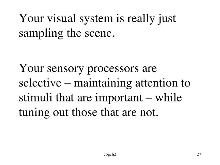 Your visual system is really just sampling the scene.