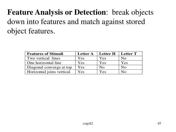 Feature Analysis or Detection