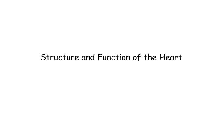 structure and function of the heart n.