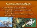processos biotecnol gicos1