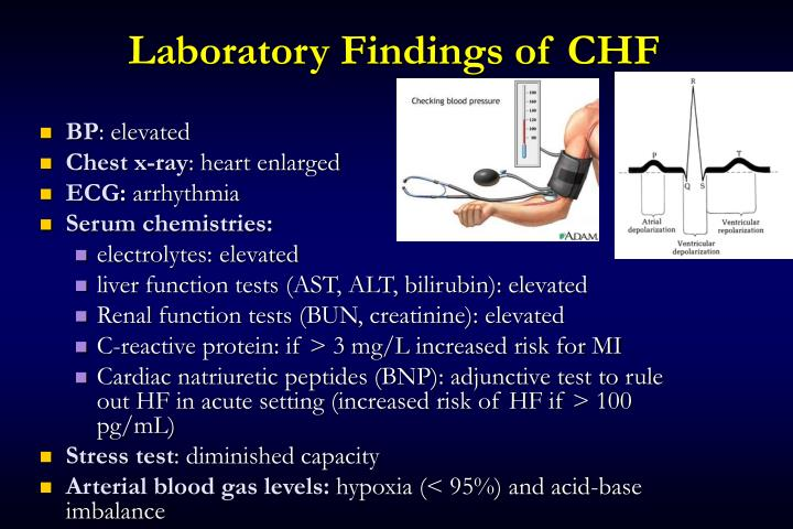 Laboratory Findings of CHF