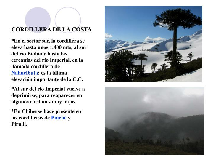 CORDILLERA DE LA COSTA