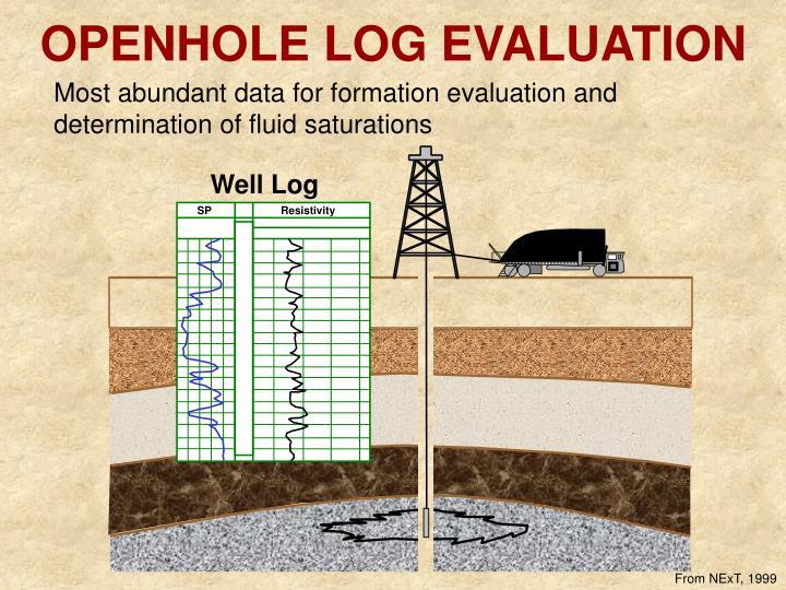 Openhole log evaluation