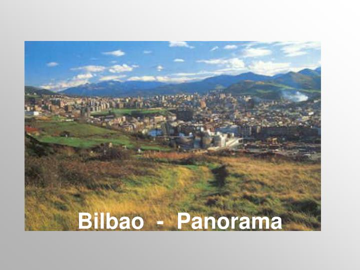 Bilbao  -  Panorama