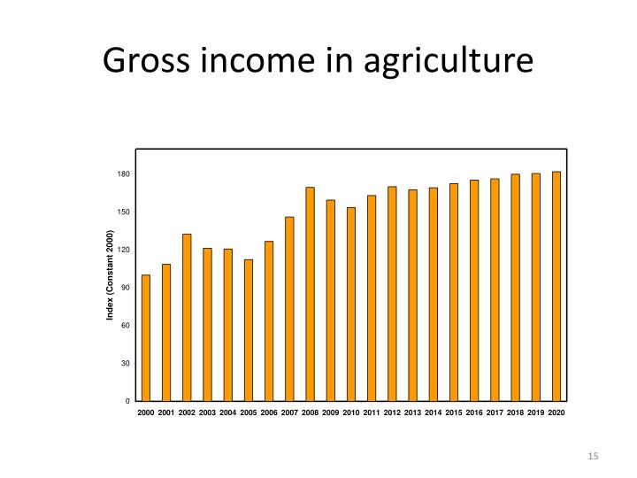 Gross income in agriculture