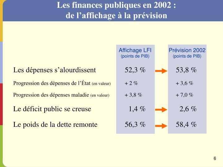 Les finances publiques en 2002 :