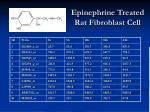 epinephrine treated rat fibroblast cell