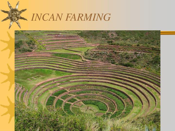 INCAN FARMING