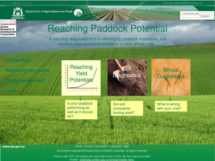 Is your paddock performing as well as it should be?