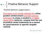 positive behavior support3