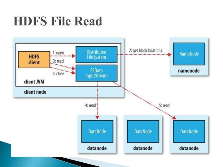 HDFS File Read
