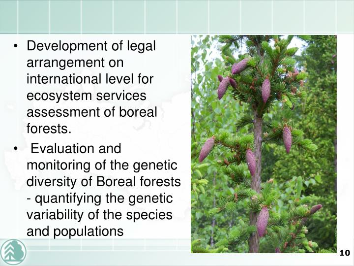 Development of legal arrangement on international level for ecosystem services assessment of boreal forests