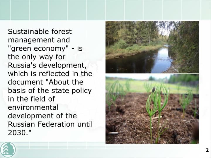"Sustainable forest management and ""green economy"" - is the only way for Russia's development, which ..."