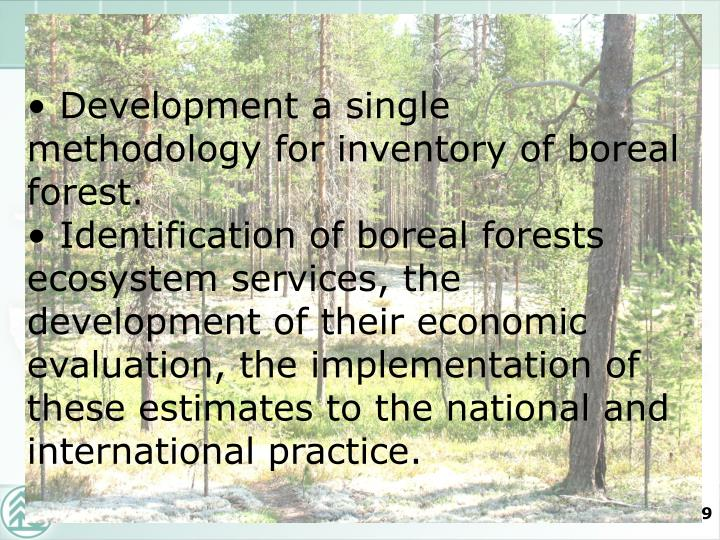 Development a single methodology for inventory of boreal forest.