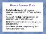 risks business model