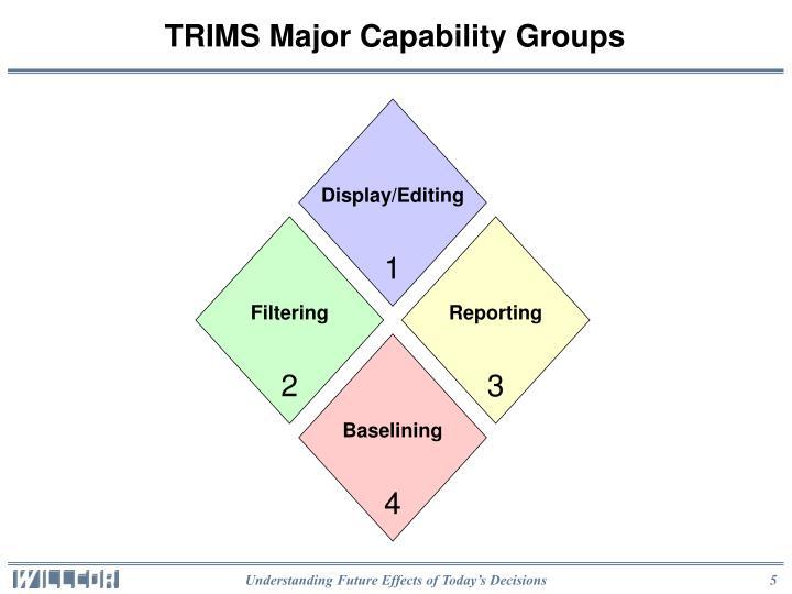 TRIMS Major Capability Groups
