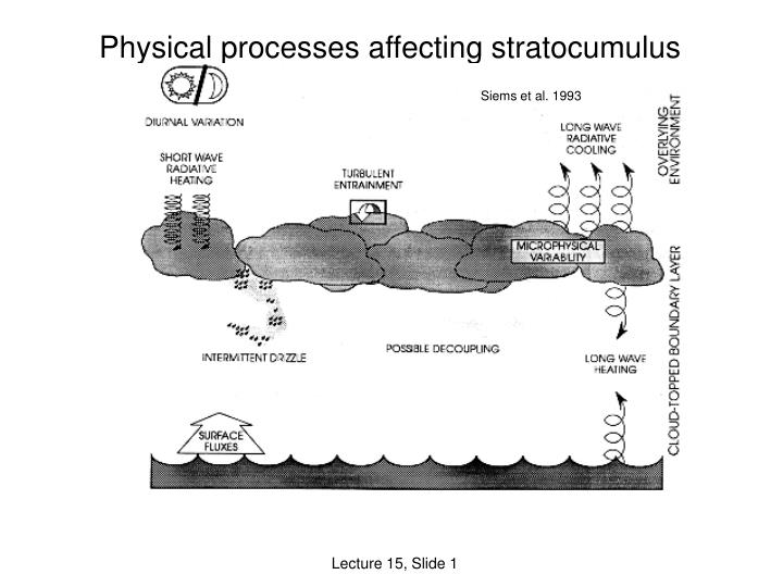 physical processes affecting stratocumulus n.