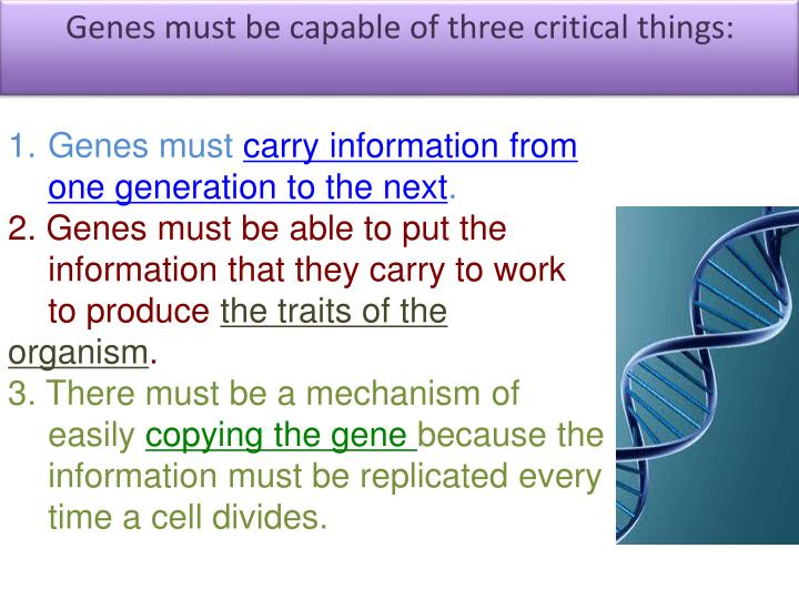 Genes must be capable of three critical things: