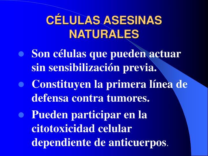 CÉLULAS ASESINAS NATURALES