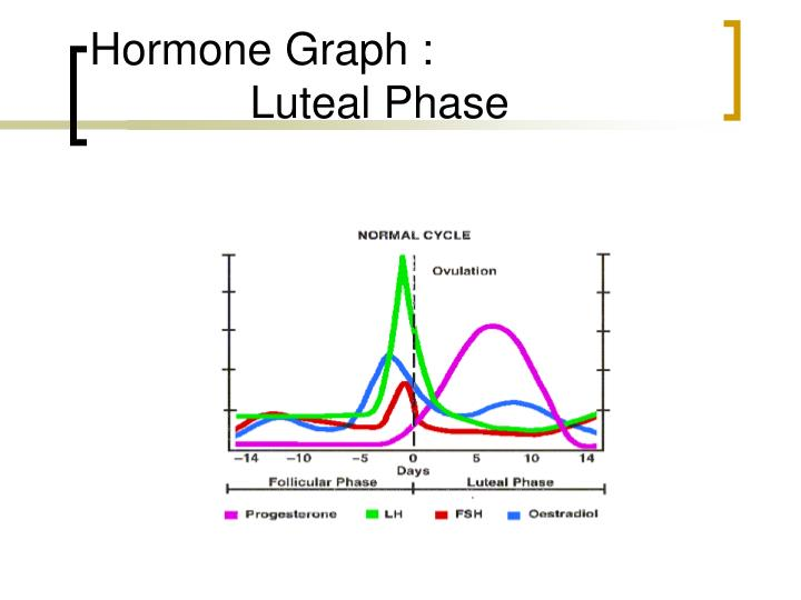 Hormone Graph :