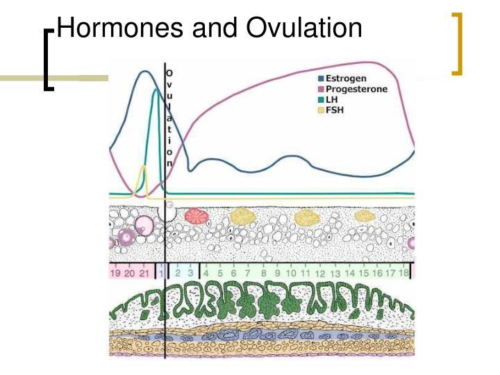 Hormones and Ovulation