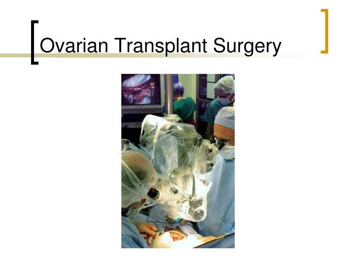 Ovarian Transplant Surgery