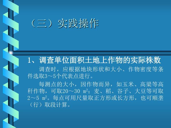 (三)实践操作