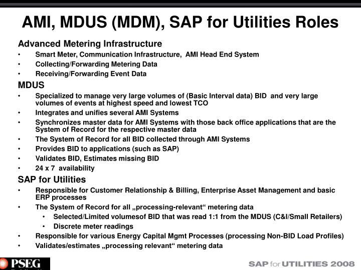 AMI, MDUS (MDM), SAP for Utilities Roles