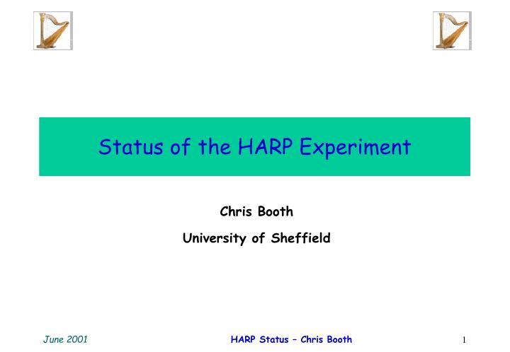 status of the harp experiment n.