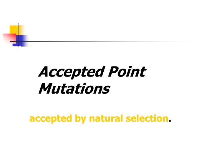 Accepted Point Mutations