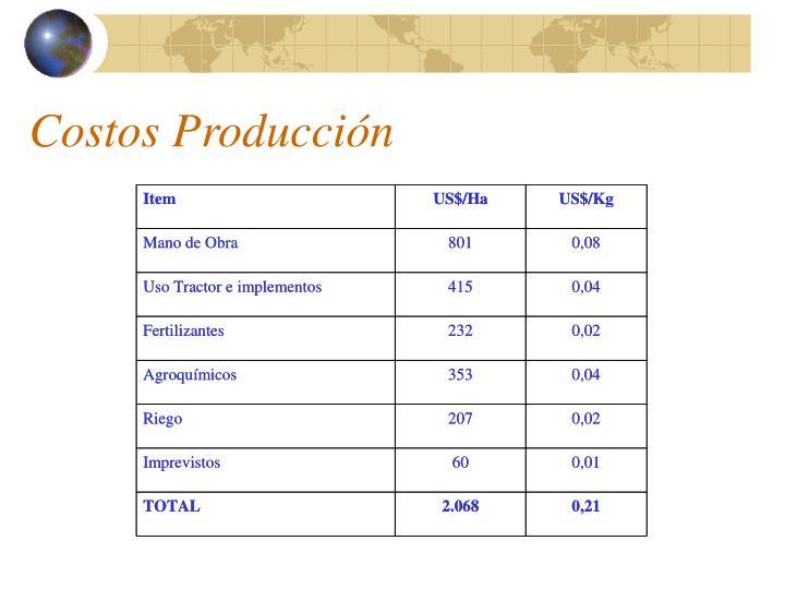 Costos Producción