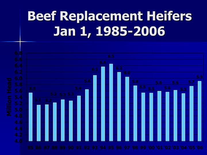 Beef Replacement Heifers Jan 1, 1985-2006