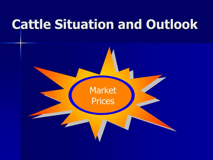 Cattle Situation and Outlook