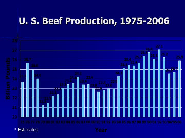 U. S. Beef Production, 1975-2006