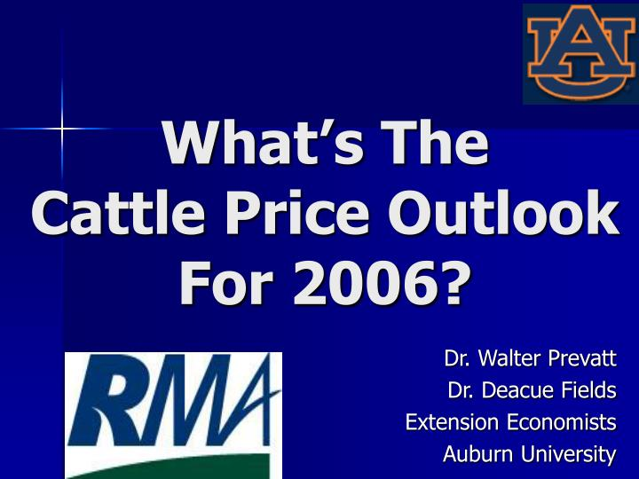 What s the cattle price outlook for 2006