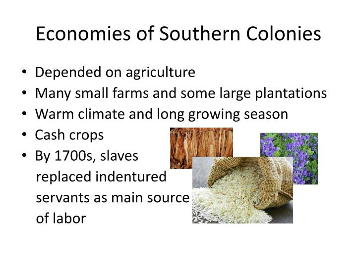 Economies of Southern Colonies