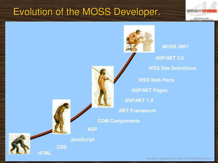 Evolution of the moss developer