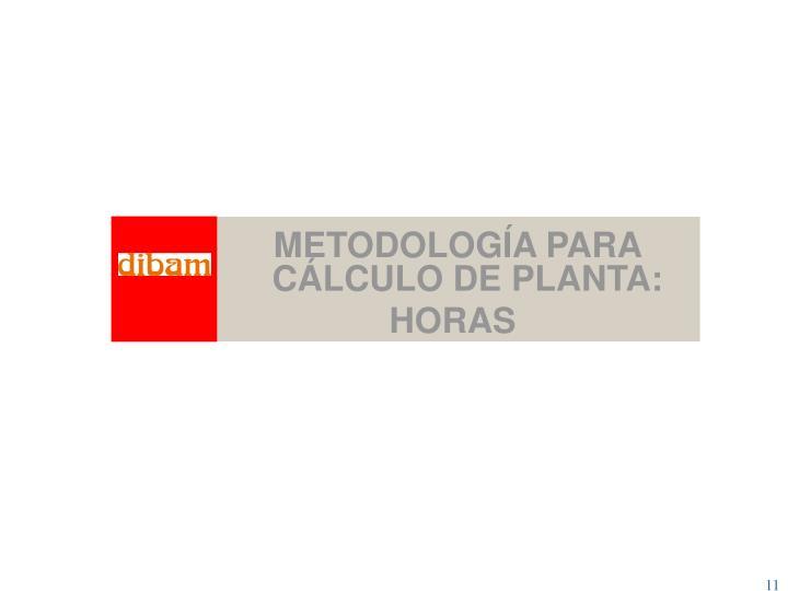 METODOLOGÍA PARA CÁLCULO DE PLANTA: