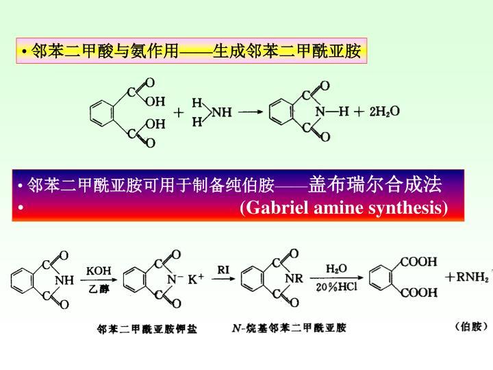 邻苯二甲酸与氨作用