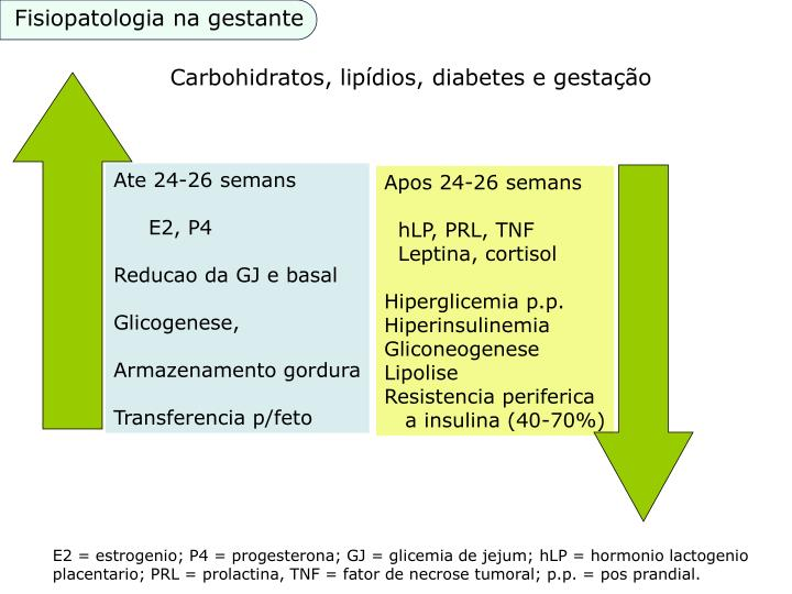 Fisiopatologia na gestante