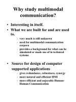 why study multimodal communication