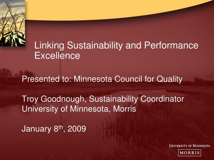 linking sustainability and performance excellence n.