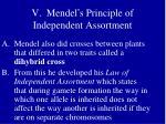 v mendel s principle of independent assortment