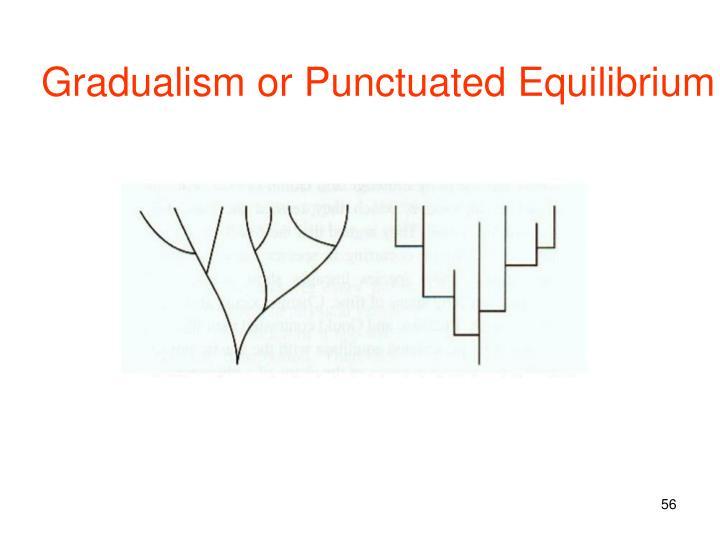 Gradualism or Punctuated Equilibrium