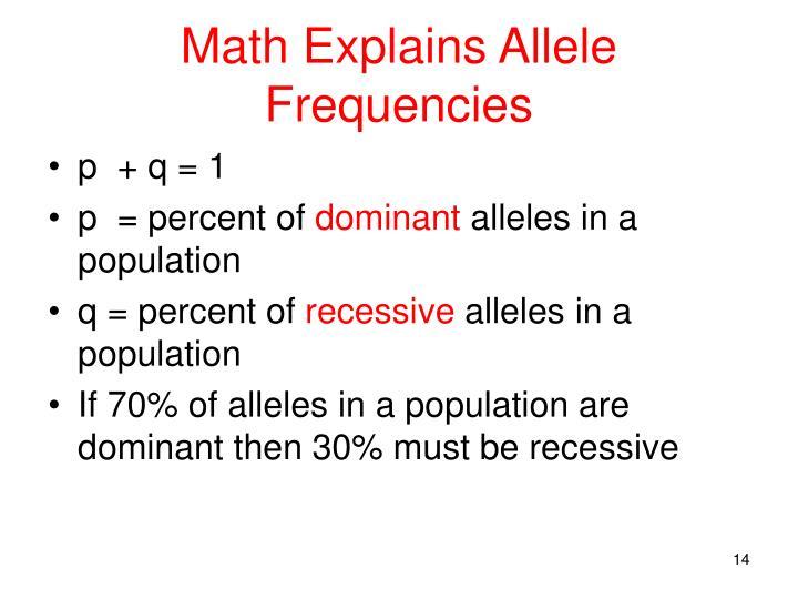 Math Explains Allele Frequencies