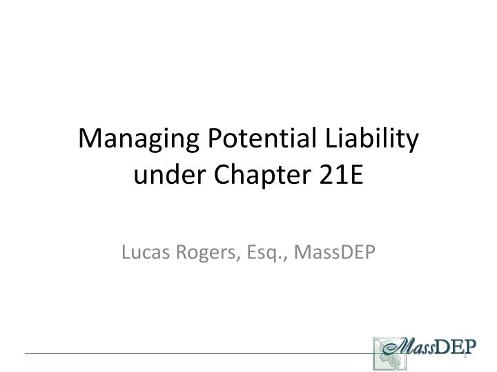 managing potential liability under chapter 21e n.