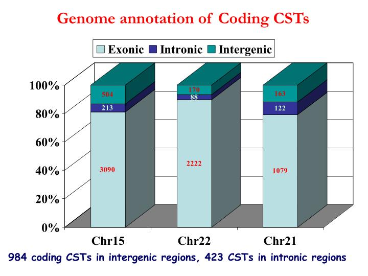 Genome annotation of Coding CSTs