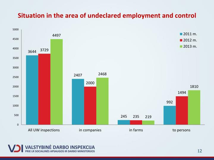Situation in the area of undeclared employment and control