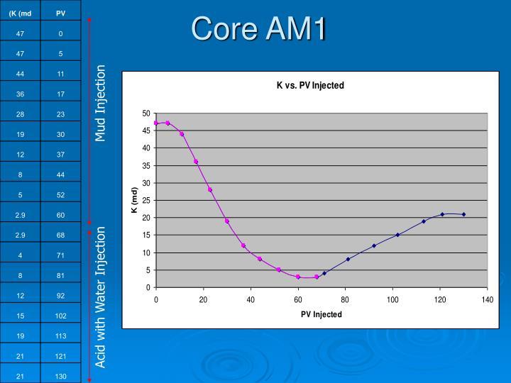 Core AM1